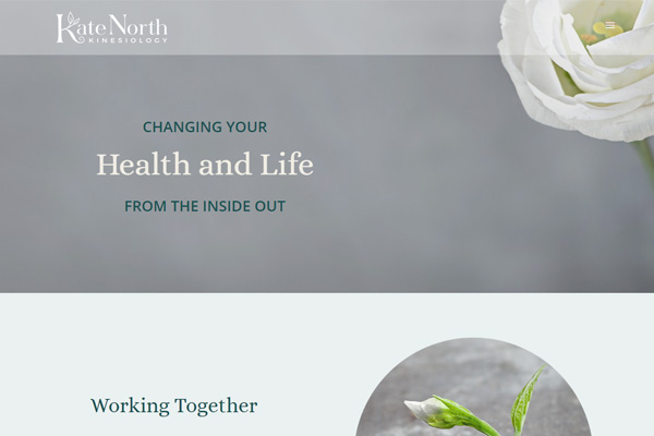 Kate North Kinesiology and Wellbeing | Keyworth | Nottingham | UK